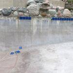 Pool 12 Before